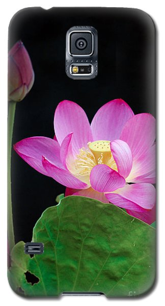 Pink Lotus Flowers Galaxy S5 Case