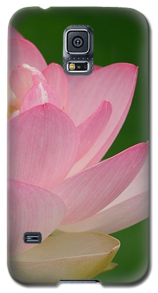 Pink Lotus Galaxy S5 Case by Jane Ford