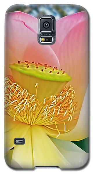 Pink Lotus Lily Galaxy S5 Case