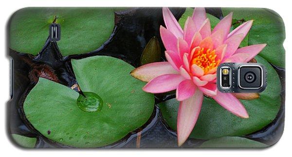 Pink Lotus Love Galaxy S5 Case