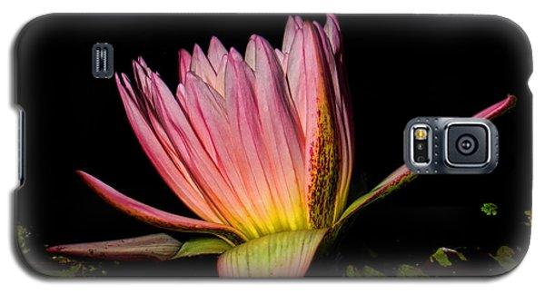 Pink Lovely Galaxy S5 Case