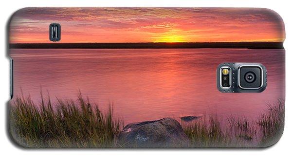 Pink Marsh Galaxy S5 Case