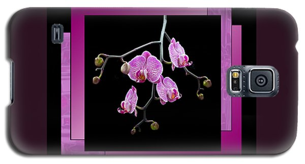 Framed Orchid Spray Galaxy S5 Case by Patti Deters