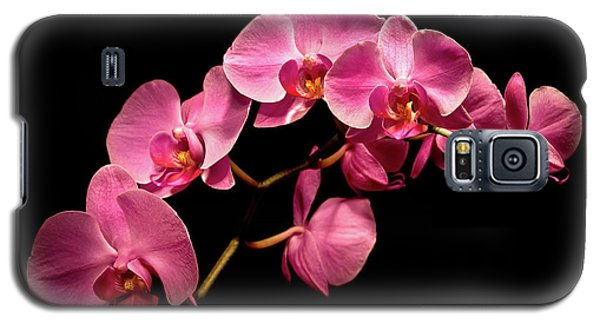 Pink Orchids 3 Galaxy S5 Case by  Onyonet  Photo Studios