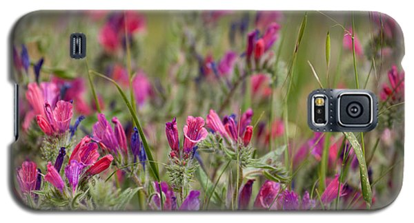 Galaxy S5 Case featuring the photograph Pink Outburst by Uri Baruch