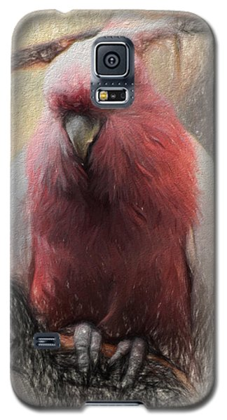 Pink Painted Parrot Galaxy S5 Case