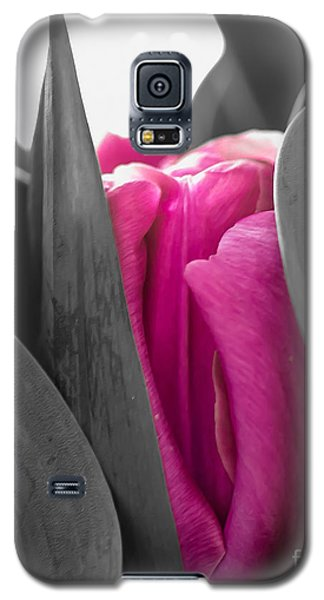 Pink Passion Galaxy S5 Case