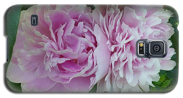 Pink Peonies 2 Galaxy S5 Case