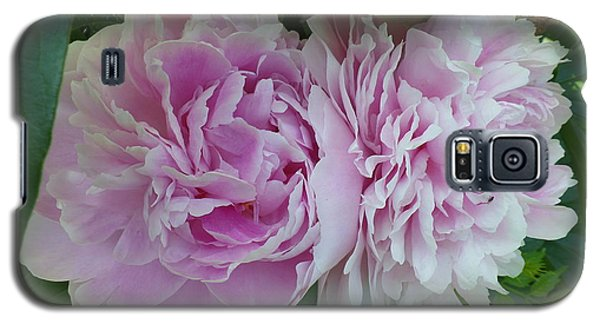 Pink Peonies 2 Galaxy S5 Case