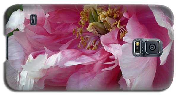 Galaxy S5 Case featuring the photograph Pink Peony Open Wide by Jeanette Oberholtzer