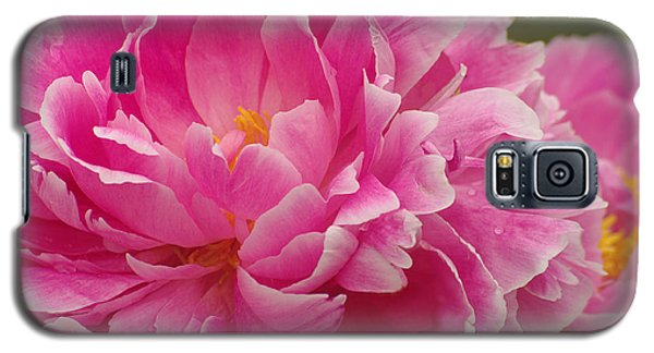 Galaxy S5 Case featuring the photograph Pink Peony by Suzanne Powers