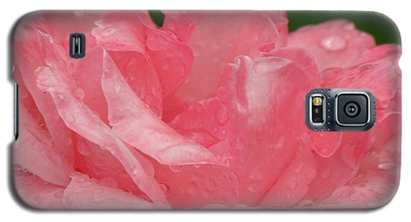 Pink Petals  Galaxy S5 Case