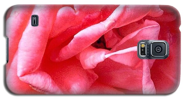 Galaxy S5 Case featuring the photograph Pink Petals Up Close Rose Art Photo by Marianne Dow