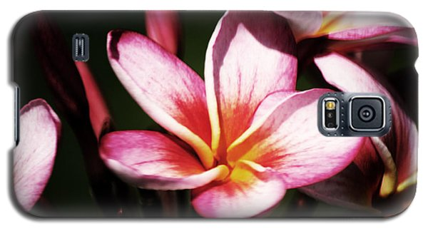 Galaxy S5 Case featuring the photograph Pink Plumeria by Angela DeFrias