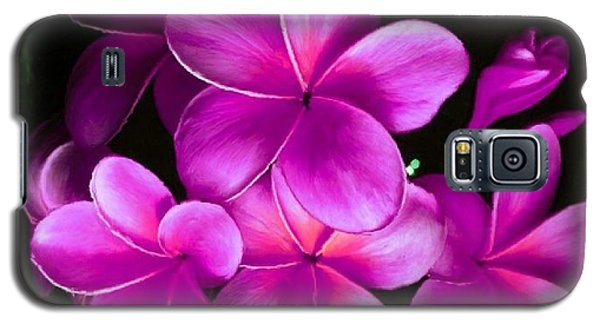 Pink Plumeria Galaxy S5 Case by Bruce Nutting