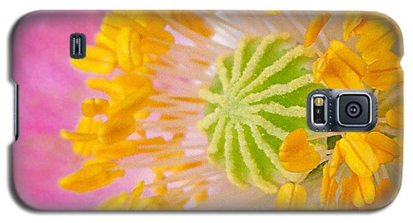 Pink Poppy Too Squared Galaxy S5 Case by TK Goforth