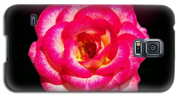 Galaxy S5 Case featuring the photograph Pink Queen  by Hanza Turgul