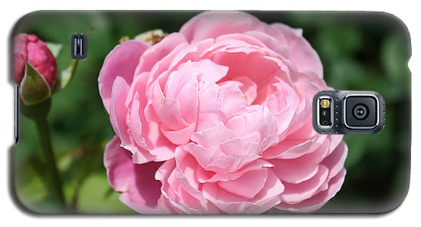 Galaxy S5 Case featuring the photograph Pink Rose 2 by Ellen Tully