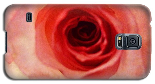 Galaxy S5 Case featuring the photograph Pink Rose by Alohi Fujimoto