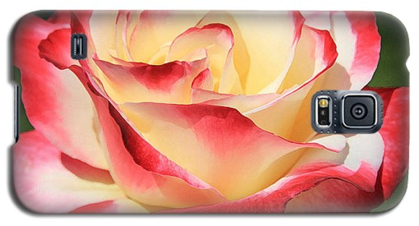 Pink Rose Galaxy S5 Case by Athala Carole Bruckner