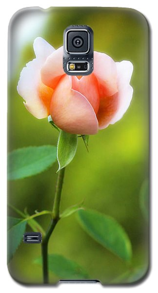 Galaxy S5 Case featuring the photograph Pink Rose by Jim Poulos