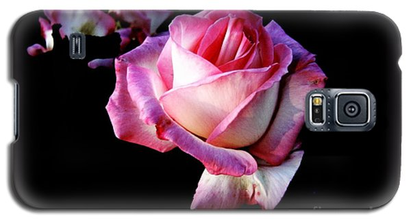 Galaxy S5 Case featuring the photograph Pink Rose  by Leanne Seymour