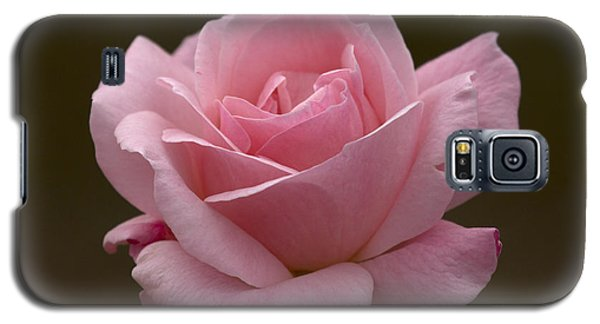 Galaxy S5 Case featuring the photograph Pink Rose by Meg Rousher