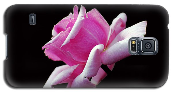 Pink Rose On Black Galaxy S5 Case