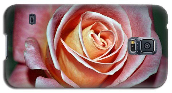 Galaxy S5 Case featuring the photograph Pink Rose by Savannah Gibbs