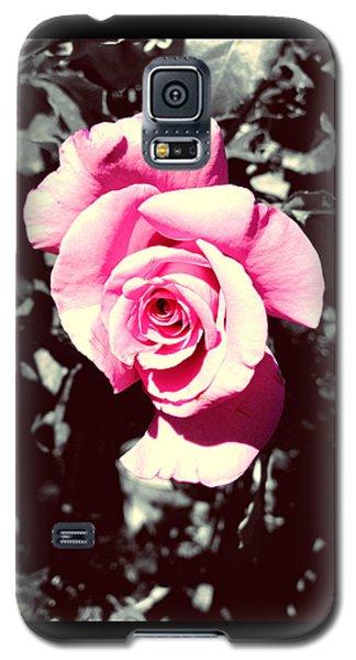 Pink Rosetta  Galaxy S5 Case