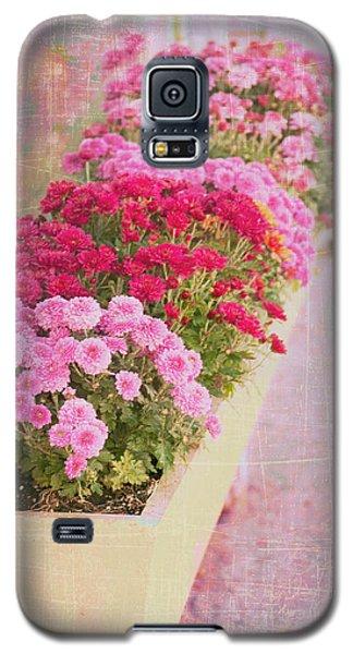 Pink Sidewalk Flowerbox Galaxy S5 Case