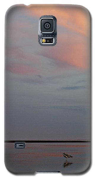 Galaxy S5 Case featuring the photograph Pink Sky And Sand by Kjirsten Collier
