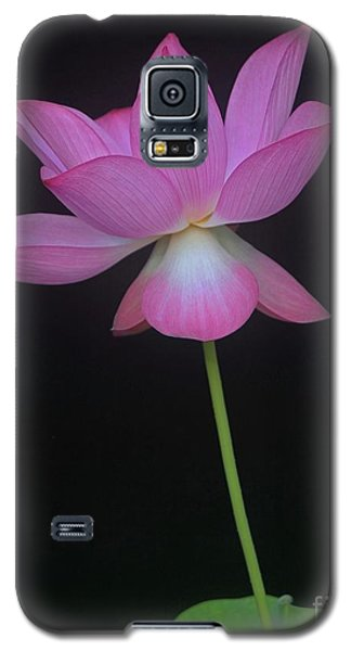 Galaxy S5 Case featuring the photograph Pink Spaces Lotus by Dodie Ulery
