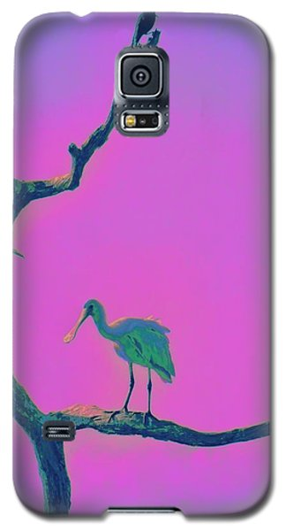 Pink Spoonbill Galaxy S5 Case by David Mckinney