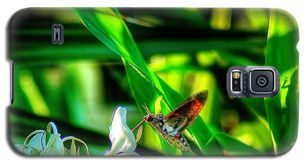 Pink Spotted Hawk Moth Galaxy S5 Case by Ed Roberts