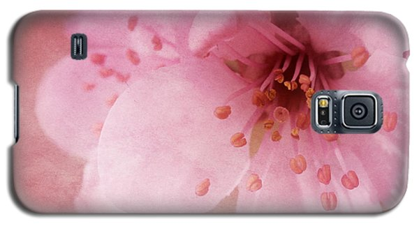 Galaxy S5 Case featuring the photograph Pink Spring Blossom by Ann Lauwers