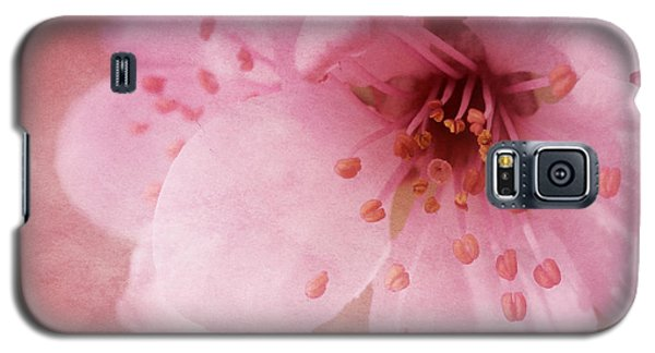 Pink Spring Blossom Galaxy S5 Case by Ann Lauwers