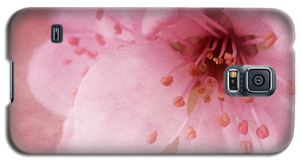 Pink Spring Blossom Galaxy S5 Case