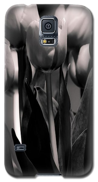 Pink Toned Tulips Galaxy S5 Case