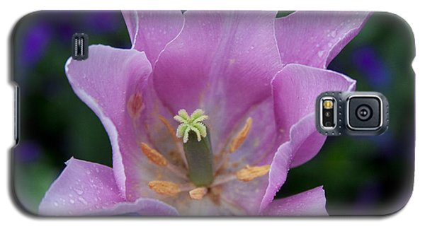 Pink Tulip Flower With A Spot Of Green Fine Art Floral Photography Print Galaxy S5 Case