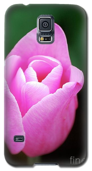 Galaxy S5 Case featuring the photograph Pink Tulip by Kathy Gibbons