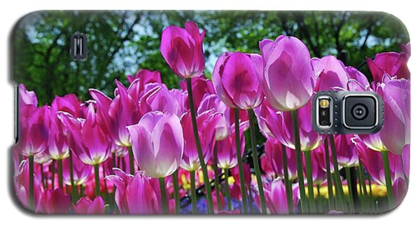Galaxy S5 Case featuring the photograph Pink Tulips by Allen Beatty