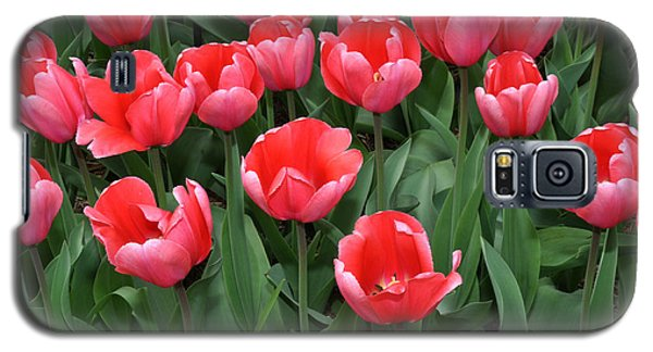 Galaxy S5 Case featuring the photograph Pink Tulips by Diane Lent