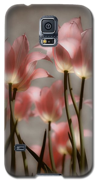 Galaxy S5 Case featuring the photograph Pink Tulips Glow by Michelle Joseph-Long