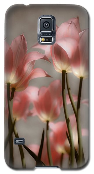 Pink Tulips Glow Galaxy S5 Case