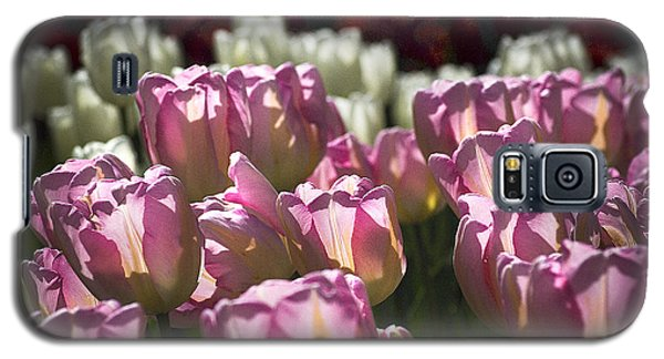 Galaxy S5 Case featuring the photograph Pink Tulips by Yulia Kazansky