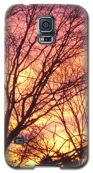 Pink Twilight Galaxy S5 Case