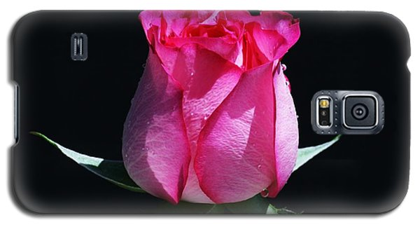 Galaxy S5 Case featuring the photograph Pink Upstart by Doug Norkum