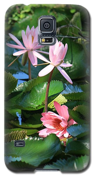 Pink Water Lillies Galaxy S5 Case