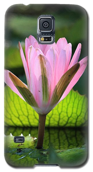 Pink Water Lilly Galaxy S5 Case